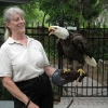 eagle6