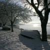 snow015small