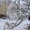 snow7small